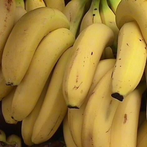 pisang-1